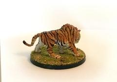tigre a dent de sabre - add-on