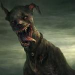 Maddog