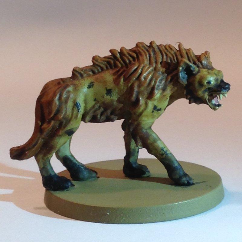 Hyene - Cyrille.JPG