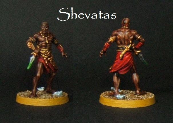 large.Shevatas.jpg