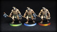 Pictes chasseurs