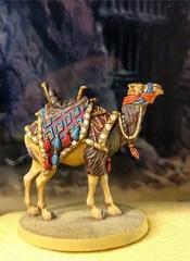 Chameau n°18 : khaali