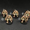 Guerriers Pictes