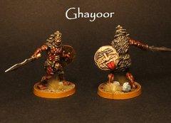 Ghayoor