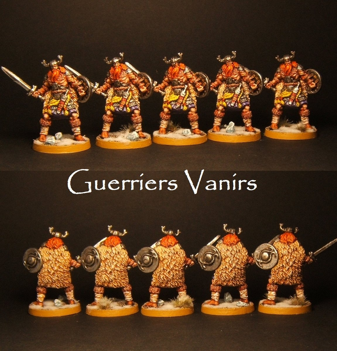 large.GuerriersVanirs.jpg.e41c53ea792e59bd61bdf9ac62a45e0d.jpg