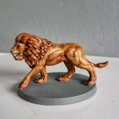 Lion de Conan