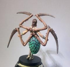 Arachne dos .JPG
