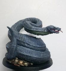 Python 2.JPG
