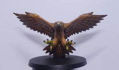 Aigle caucase 2.jpg
