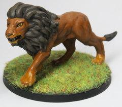 Le lion de Conan