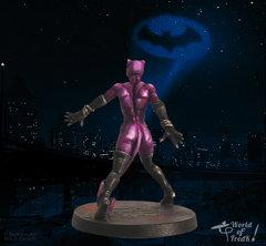 Catwoman_TLH_Dos.jpg