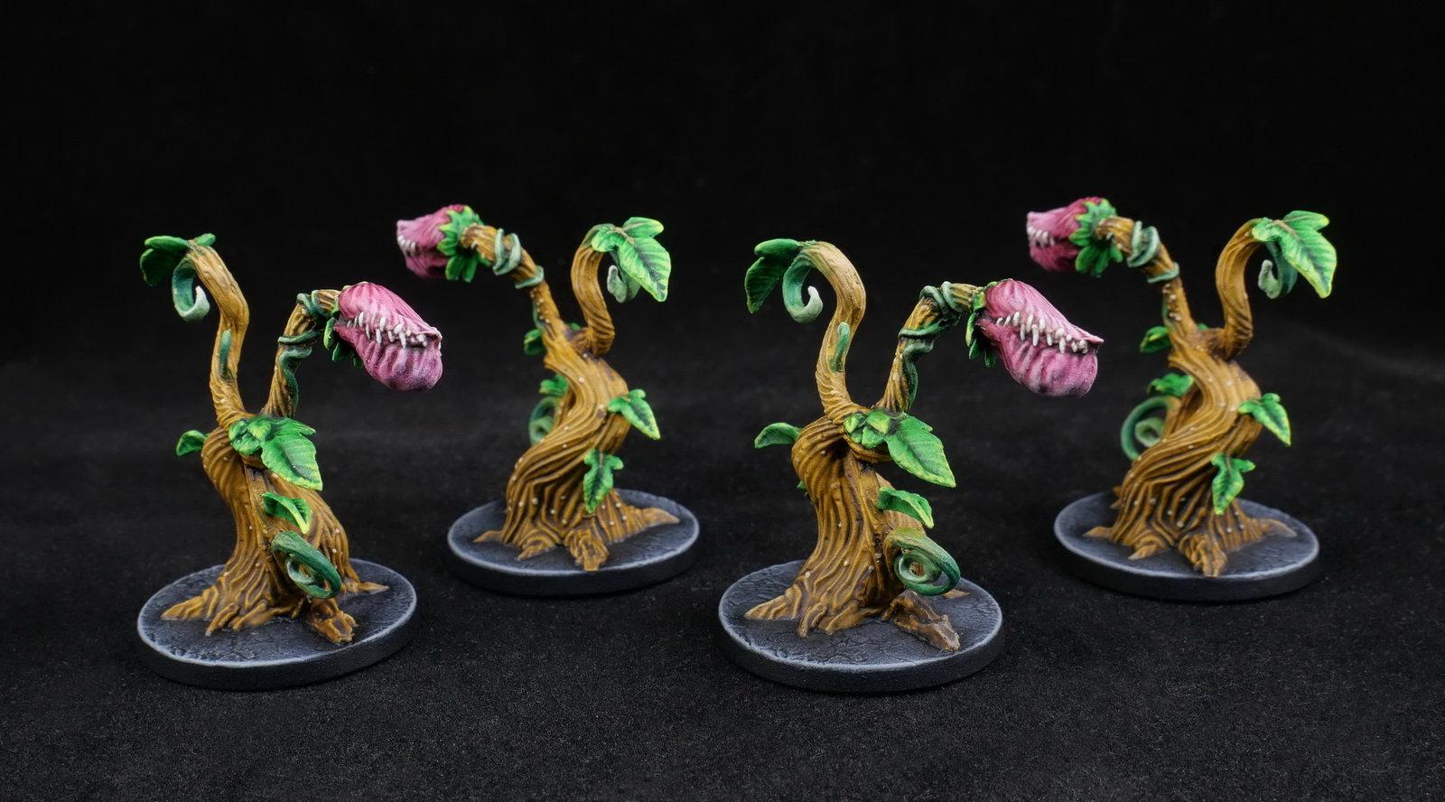 Carnivorous plant (groupe)