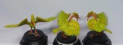 Oiseau stymphale 2.jpg