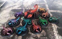 Nid de Scorpions